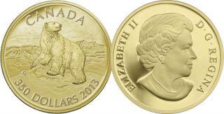 2013 - $350 - Pièce en or pur - Ours polaire