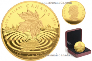 2015 - $200 - 1 oz. Pure Gold Coin - Maple Leaf Reflection