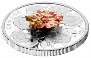 2019 - $50 - 5 oz. Pure Silver Coin - The Bumble Bee and the Bloom
