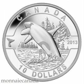 2013 - $10 - 1/2 oz. Fine Silver Coin - Orca