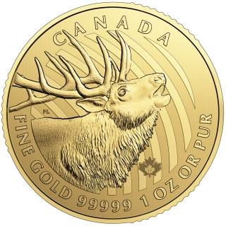 "2017 - $200 - 1oz Fine Gold 99999 - ""CALL OF THE WILD"" :The Elk"