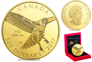 2017 - $500 - 5 oz. Pure Gold Coin - Red-Tailed Hawk