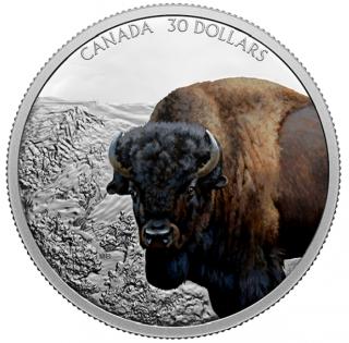 2021 - $30 - Pièce de 2 oz en argent pur - Prestance faunique : Bison