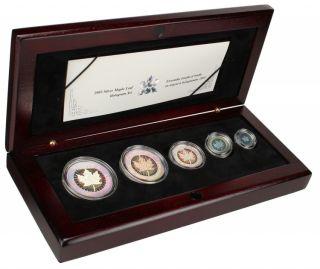2003 - 5 Coin Hologram Silver Maple Leaf Set .9999 Fine