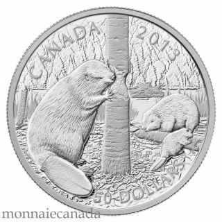 2013 - $50 - 5 oz. Fine Silver Coin - Swimming Beaver