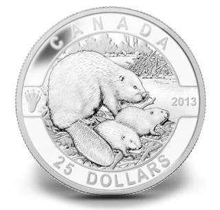 2013 - $25 - 1 oz Fine Silver Coin - O Canada Series - The Beaver