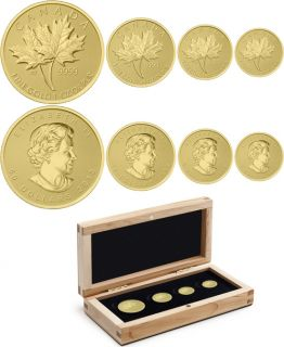 2013 - Pure Gold Fractional Set - Maple Leaf