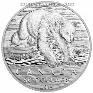 2014 - $50 for $50 - Fine Silver Coin - Polar Bear