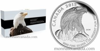 2015 - Fine Silver Fractional Set – Bald Eagle