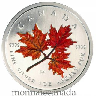 2001 -  $5 - AUTUMN COLORED MAPLE LEAF FINE SILVER .9999