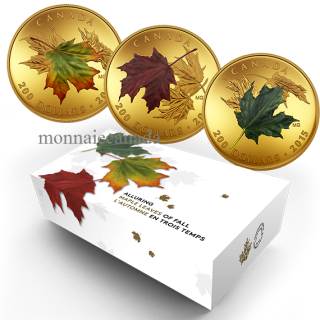 2015 - $200 - 1 oz. Pure Gold Coloured 3-Coin Set – Alluring Maple Leaves of Fall