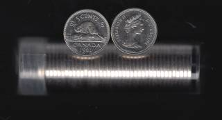 1981 Canada 5 Cents - 40 Coins in Plastic Tube - B.UNC