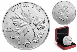 2016 - $10 - Canadian Maple Leaves 1/2 oz. Fine Silver Coin