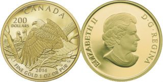 2014 - $200 - 1 oz Pure Gold Coin - Bald Eagle Protecting Her Nest