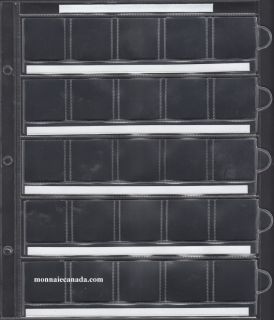 1 Sheet for Uni-Safe Binder 25-Pocket page to hold large cents