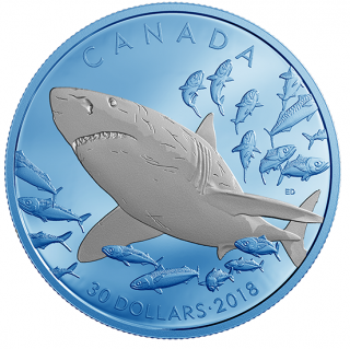 2018 - $30 - 2 oz. Pure Silver Coin with Selective Blue Rhodium Plating - Great White Shark