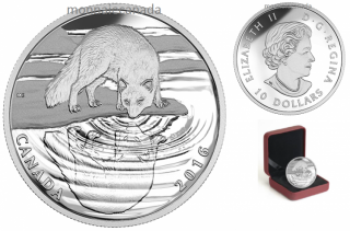 2016 - $10 - Fine Silver - Reflections of Wildlife - Arctic Fox