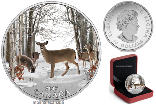 2017 - $10 - 1/2 oz. Pure Silver Coloured Coin - Iconic Canada: Spring Sightings