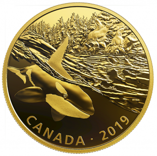 2019 - $30 - 2 oz. Pure Silver Gold-Plated Coin - Golden Reflections - Predator and Prey: Orca and Sea Lions