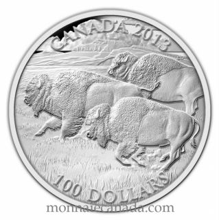 2013 - $100 for $100 Fine Silver Coin - Bison