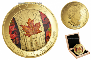 2016 - $2500 - One Kilogram Pure Gold Coloured Coin – Maple Leaf Forever