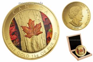 2016 - $2500 - Pièce colorée en or pur de un kilogramme – La richesse d'un symbole