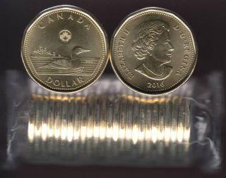 2016 Canada $1 Dollar - Loon - BU ROLL 25 Coins - UNC