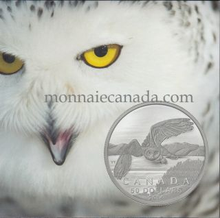 2014 - $50 for $50 Fine Silver Coin - Snowy Owl