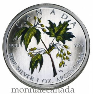 2003 - $5 - SUMMER COLORED MAPLE LEAF FINE SILVER .9999
