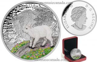 2015 - $20 - 1 oz. Fine Silver Coloured Coin - Baby Animals: Mountain Goat