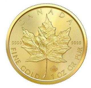 2020 - $50 - 1oz Fine Gold 9999 - Gold Maple Leaf