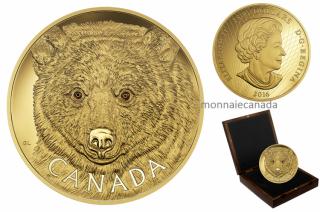 2016 - $2500 - Pièce de un kilogramme en or pur – Le regard de l'Ours Esprit