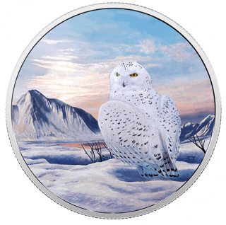 2018 - $30 - 2 oz. Pure Silver Glow-in-the-Dark Coin - Arctic Animals: Snowy Owl
