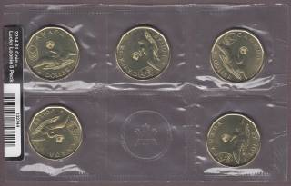 2014 Canada Dollar - Lucky Loonie - Circulation Pack of 5 Sealed Coins