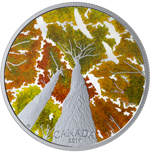 2019 - $30 - 2 oz. Pure Silver Coin - Canadian Canopy: The Canada Goose