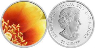2013 - The Eastern Prickly Pear Cactus 25¢