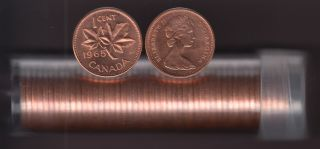 1965 Canada 1 Cent - BU ROLL 50 Coins - UNC - in Plastic Tube