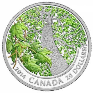 2014 - $20 - 1 oz. Fine Silver Coin - Canadian Maple Canopy (Spring)
