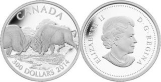 2014 - $300 - 1 oz. Fine Platinum Coin - Fighting Bison