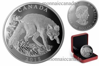 2015 - $125 -un demi-kilogramme en argent fin – Série Conservation : Le renard gris