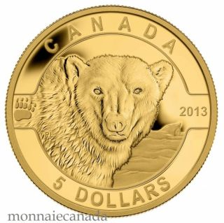 2013 - $5 * 1/10 oz Pure Gold Coin - The Polar Bear