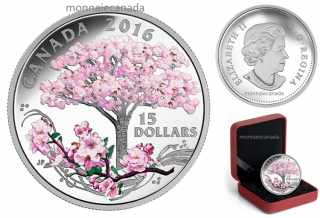 2016 - $15 - Fine Silver Coloured Coin – Celebration of Spring: Cherry Blossoms