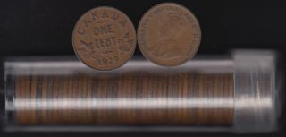 1929 Canada 1 Cent - ROLL 50 Coins - in Plastic Tube