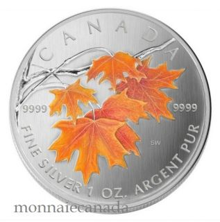 2007 $5 Fine Silver Maple Leaf Coloured - Sugar Maple in Orange - TAX Exempt