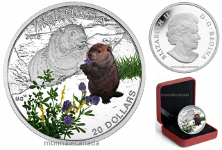 2016 - $20 - 1 oz. Fine Silver Coloured Coin – Baby Animals - Baby Woodchuck