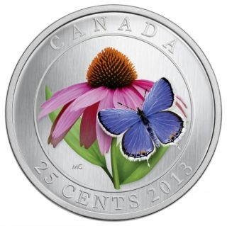 2013 - Purple Coneflower and Eastern Tailed Blue - Coloured Coin 25¢