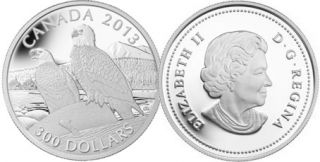 2013 - $300 - Pièce de 1 oz en platine pur - The Bald Eagle