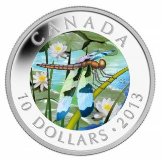 2013 - $10 1/2 oz Fine Silver Coin - Twelve-Spotted Skimmer