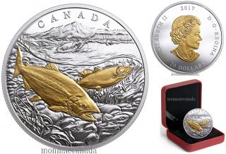 2017 - $20 - 1 oz argent pur placage en or - Trois océans du Canada : Saumon du Pacifique