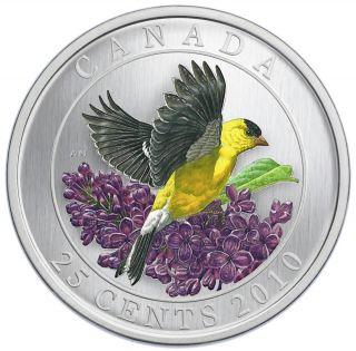 2010 - 25 cents - Chardonneret Jaune - Oiseau